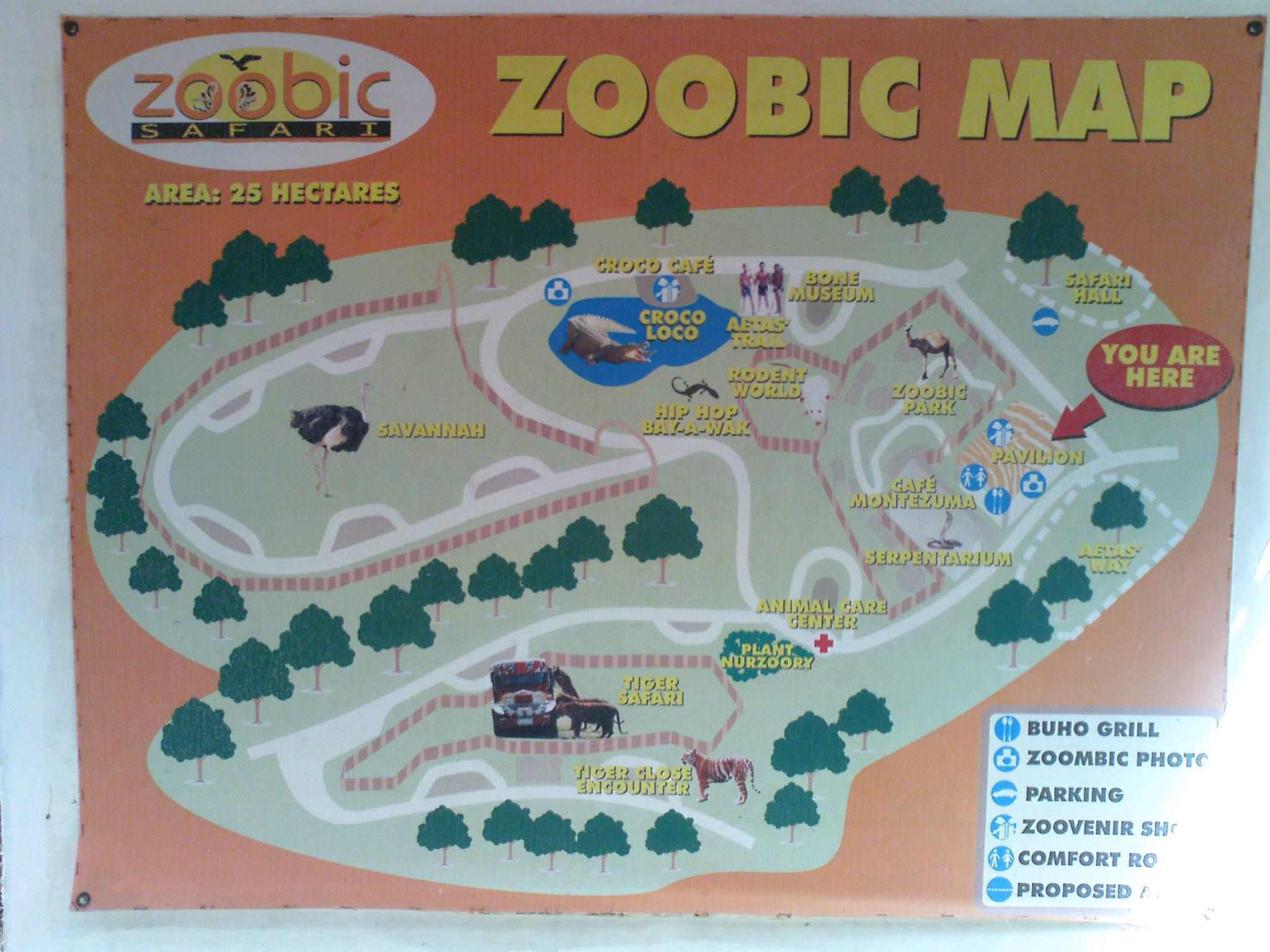 0c5df93f8b Zoobic Safari Adventure Map